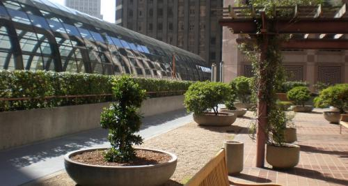 office roof gardens